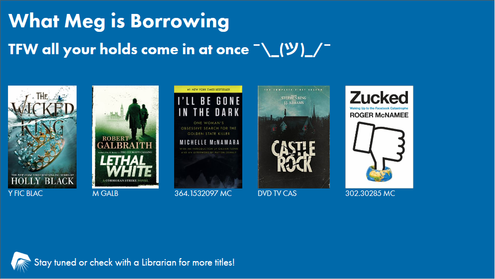 What Meg is Borrowing slide